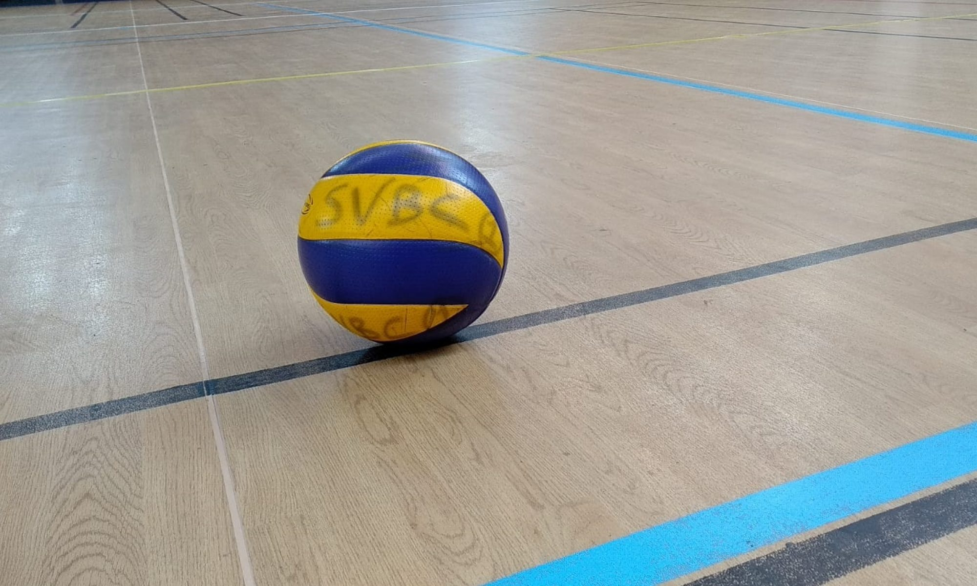 Suresnes Volley-Ball Club